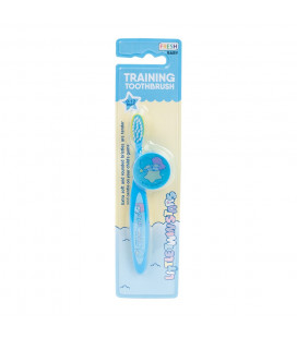 Little Twin Stars Training Toothbrush
